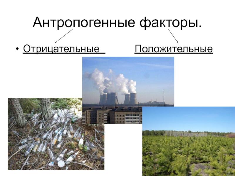 Антропогенные факторы в картинках