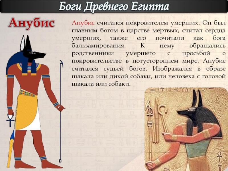 Слоган к картинке древних людей вам нужно