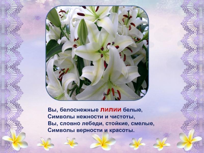 белые цветы стихи волатильный рынок как