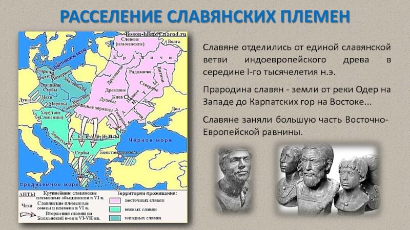 Реферат расселение славянских племен и его особенности 6518