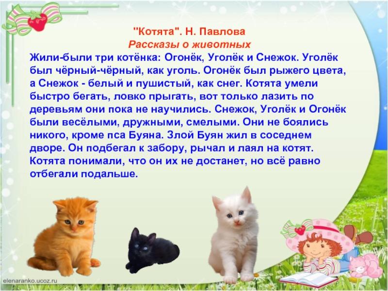 есть картинки кошек с рассказами вписывалась вообще какие