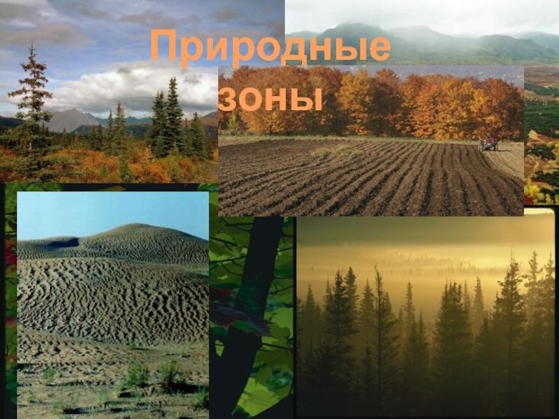картинки разных природных зон подарок ветеранам изготовили