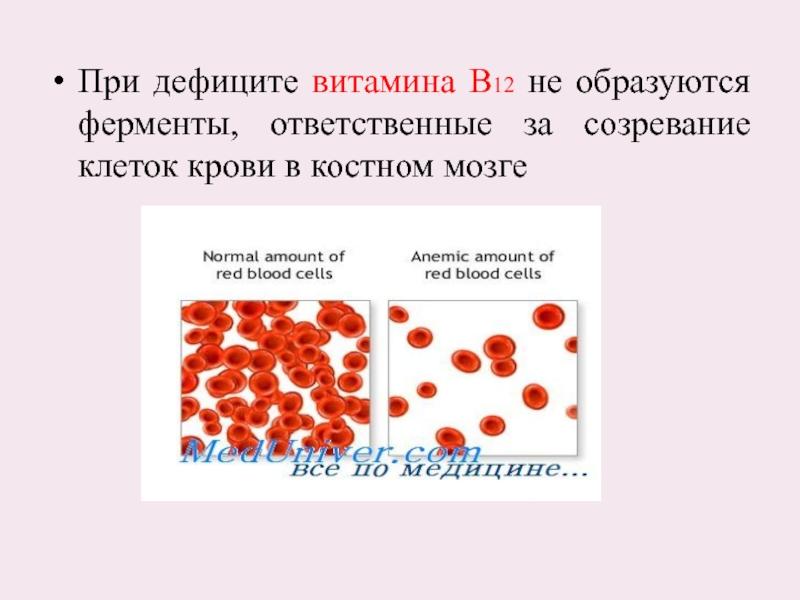 Крови в нехватка витамина анализ крови диеты группе для анализ по