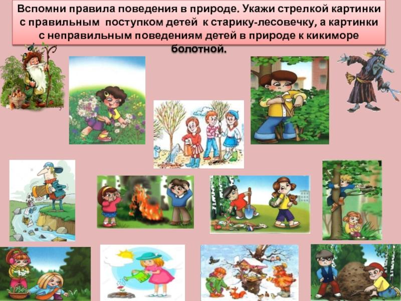 Поведение в природе для дошкольников в картинках
