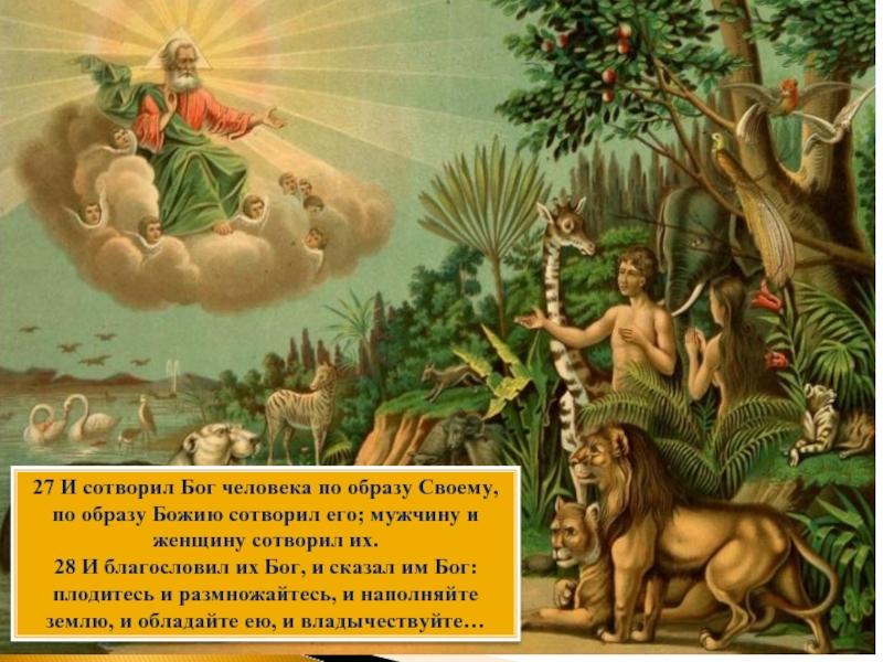 Бог Сотворил Попа