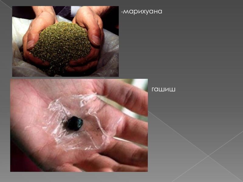 Пагубное воздействие марихуаны марихуана в первые недели
